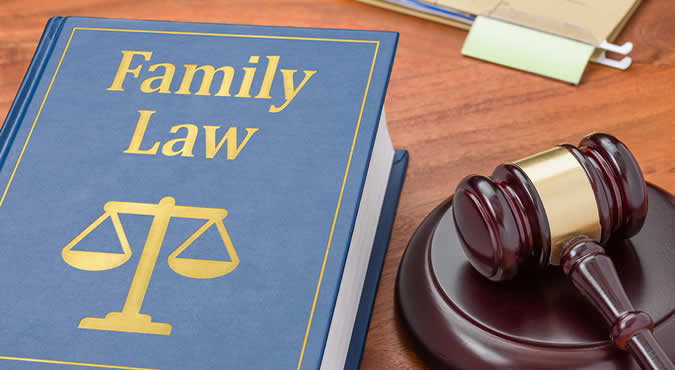alimony explained in family law book