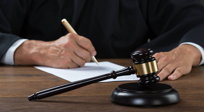 judge for litigation case